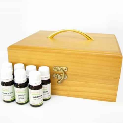 Professional Aromatherapy Kit 2